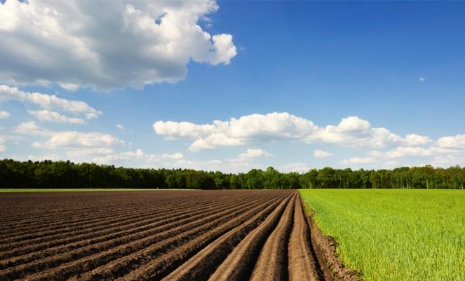 Чем отличается земельный пай от имущественного