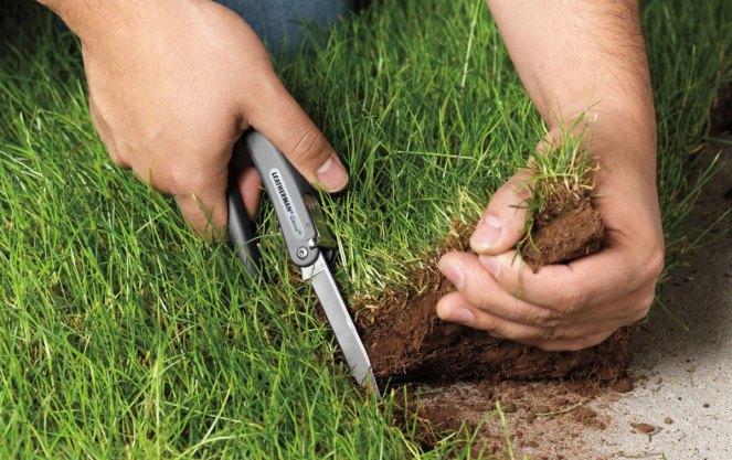Осуществление земельного контроля