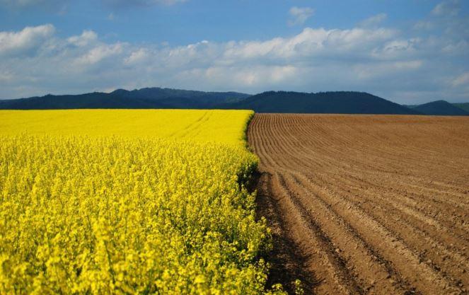 Категории сельскохозяйственных земель