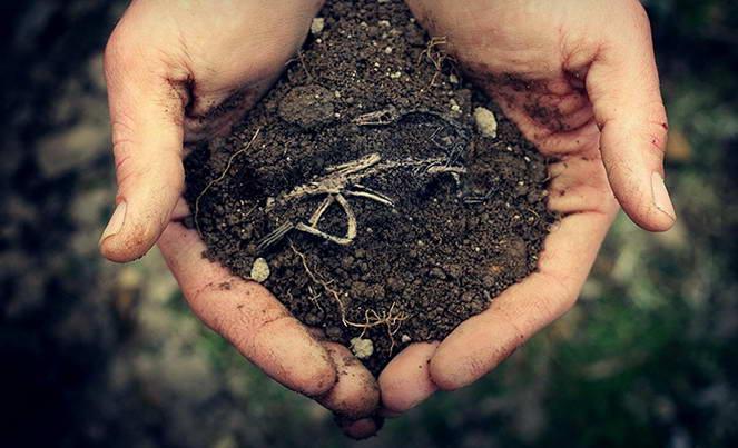 Как уменьшить кадастровую стоимость земли в 2019 году