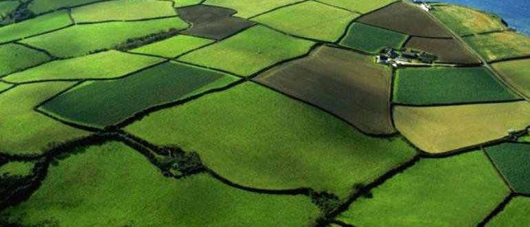Как рассчитывается удельный показатель кадастровой стоимости земельного участка в 2019 году