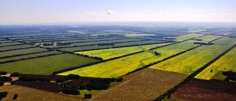 Продажа земельного участка в общей долевой собственности 2019