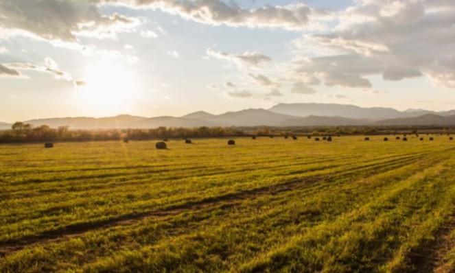 Земельный участок в правовом поле