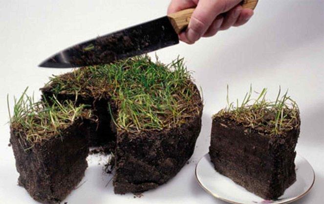 Принцип устойчивости землепользования