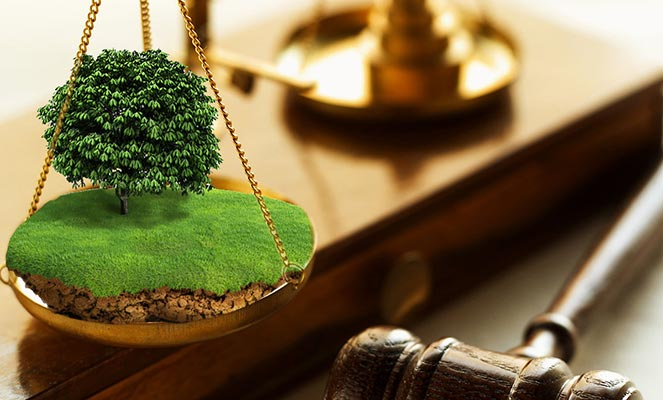 Изъятие земельного участка через суд