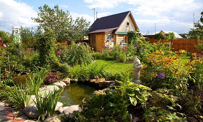 Пример планировки садового участка