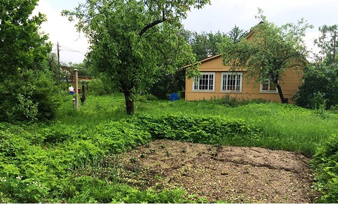 Садовый земельный участок с домиком
