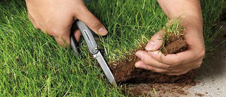 Как оформить самозахват земли в собственность: можно ли это сделать?