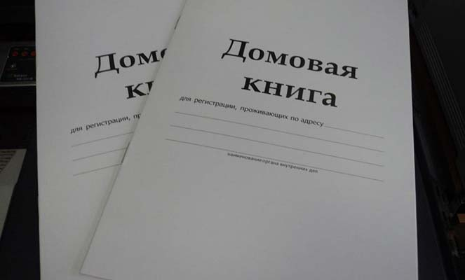 Новые домовые книги