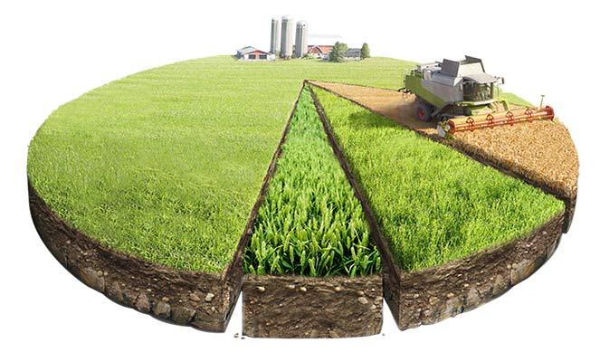 Долевая собственность на землю сельскохозяйственного назначения