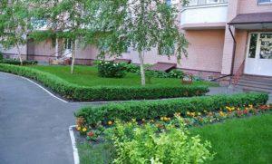 Озеленение дворовой территории МКД